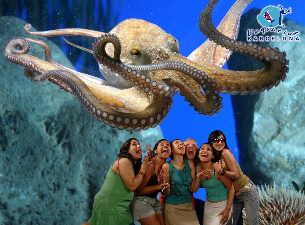 Das Aquarium in Barcelona