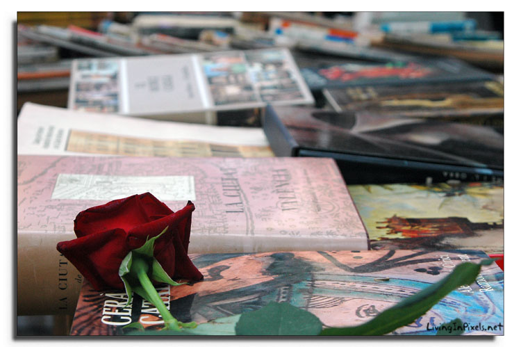 books and roses saint george day