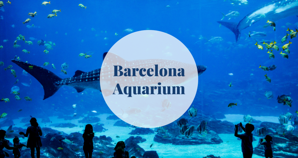 Barcelona Aquarium - Barcelona-home
