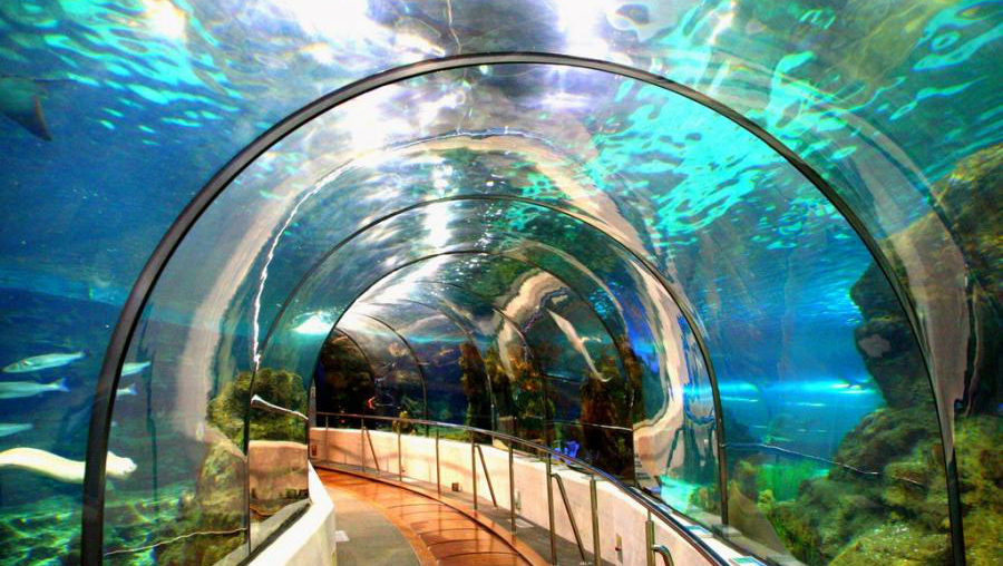 The Barcelona Aquarium