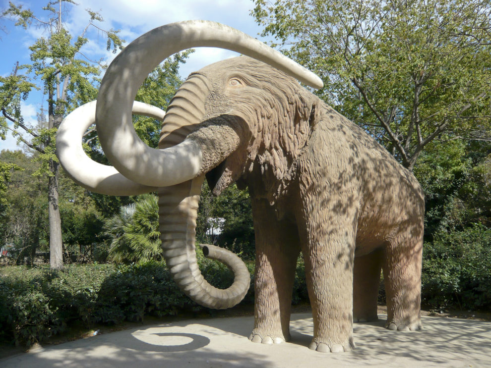 Mammoth Sculpture