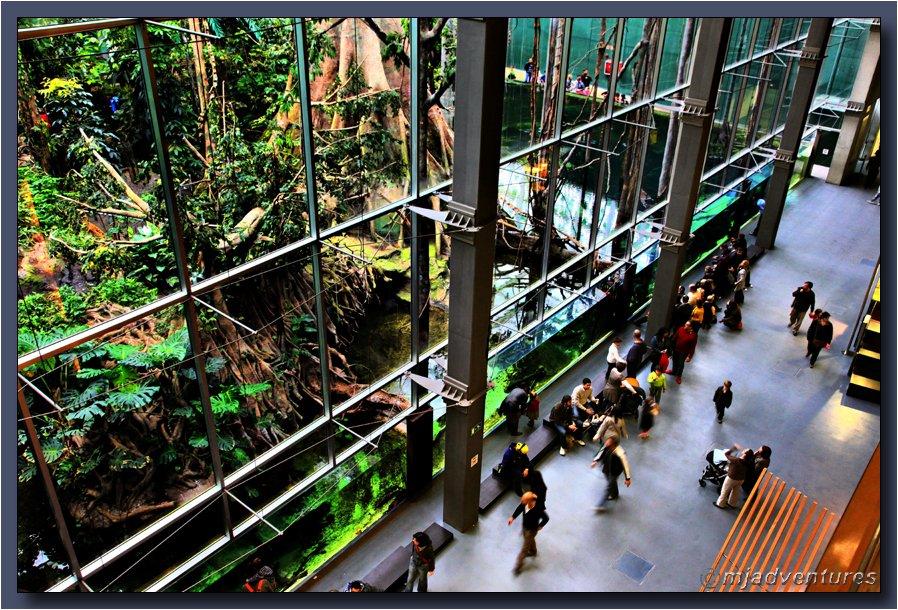 cosmocaixa-barcelona-science-museum-park