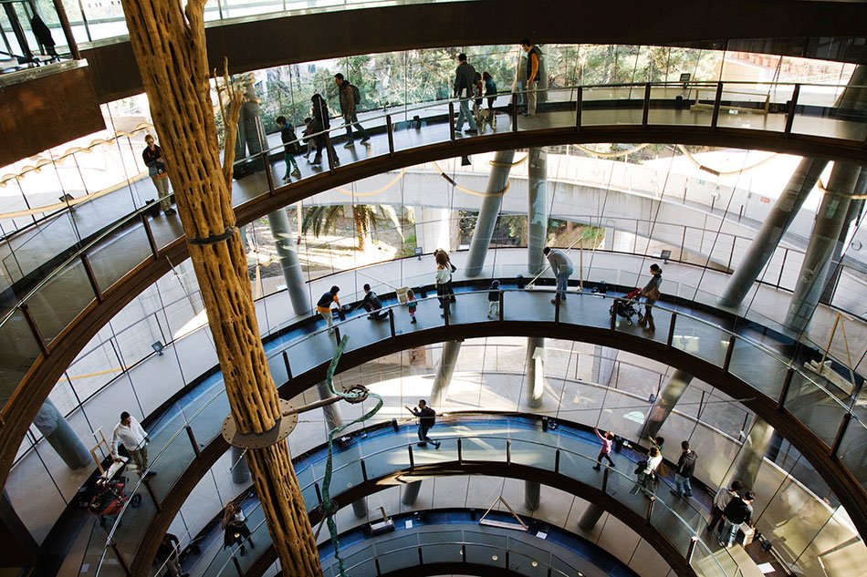 cosmocaixa-packed-with-visitors