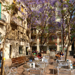 Beautiful Neighbourhood of Gracia Barcelona