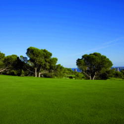 Beautiful Pitch and Putt Grounds Barcelona Spain