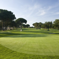 Gold course in Barcelona Spain