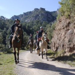 Horse Riding in Barcelona Spain