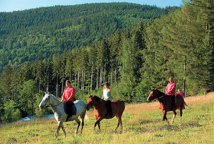 Horse riding with stunning views