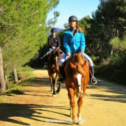 Horseback Riding experience with Living It