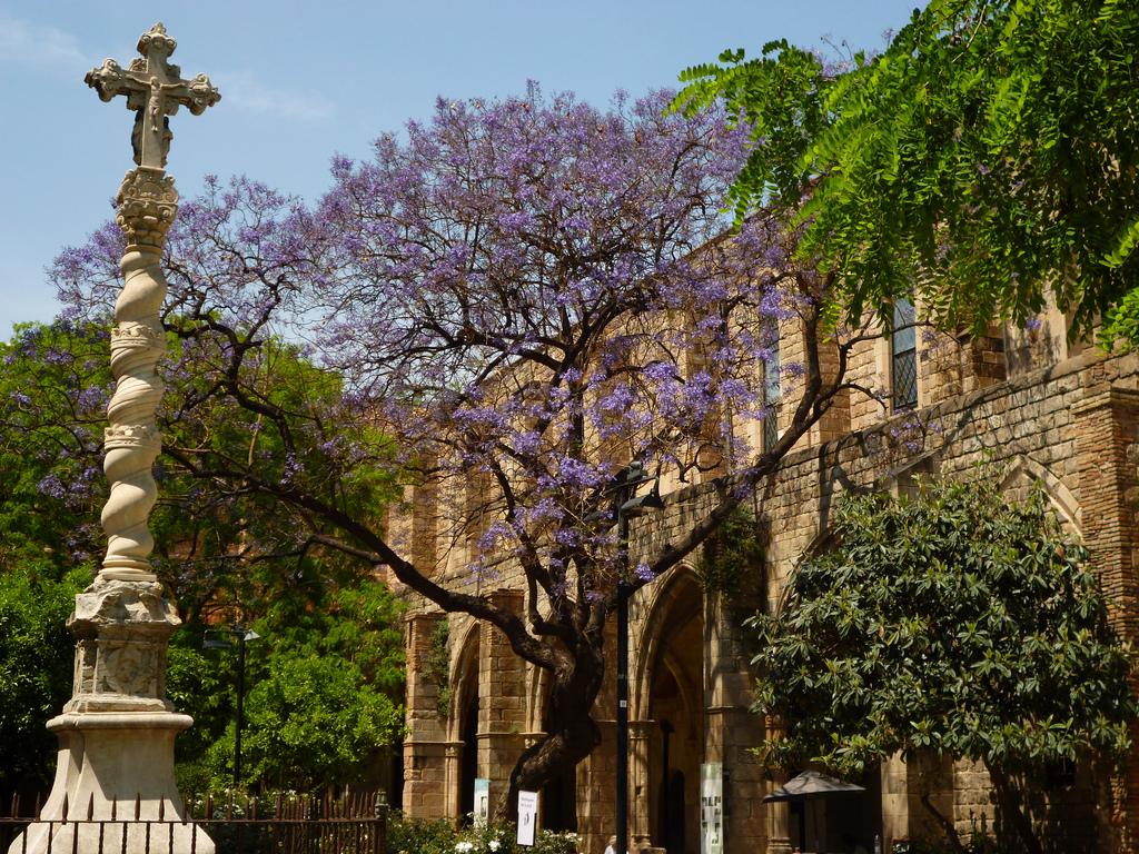 El raval in ciutat vella barcelona barcelona home for Barcelona jardin