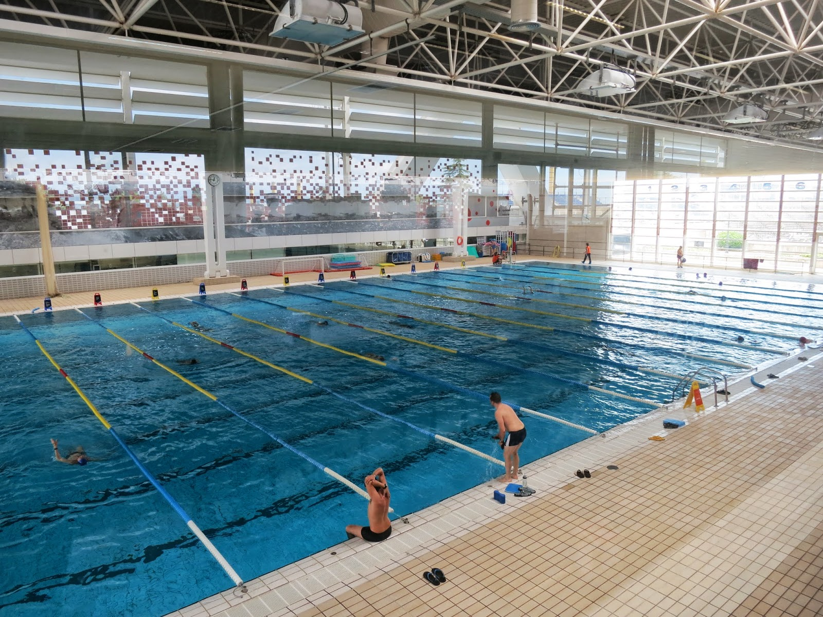 piscines bernat picornell indoor pool - Olympic Swimming Pool 2013