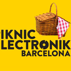 Piknic Electronik 2014