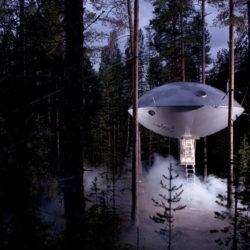 Top 10 Most Amazing Tree Houses