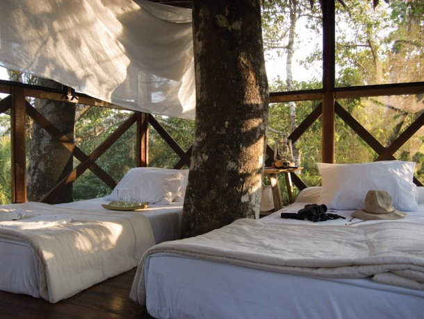 4.canopy-tree-house