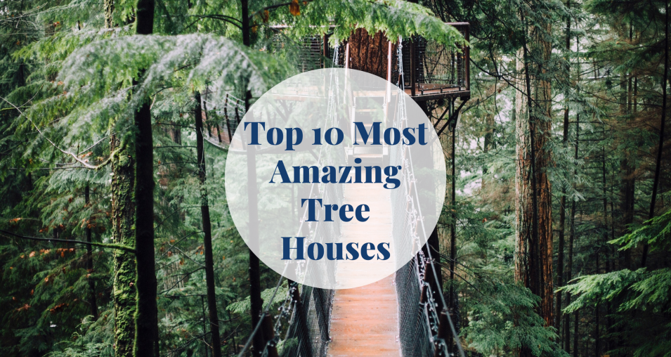 Top 10 Most Amazing Tree Houses Barcelona-Home