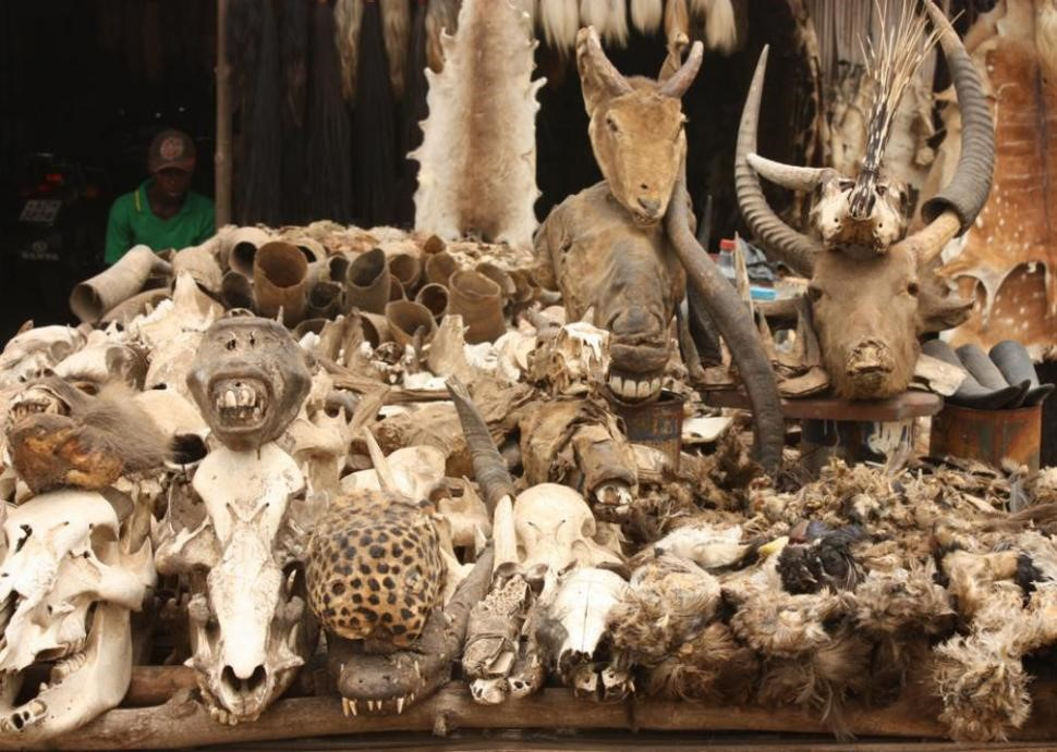 akodessewa-fetish-market-togo