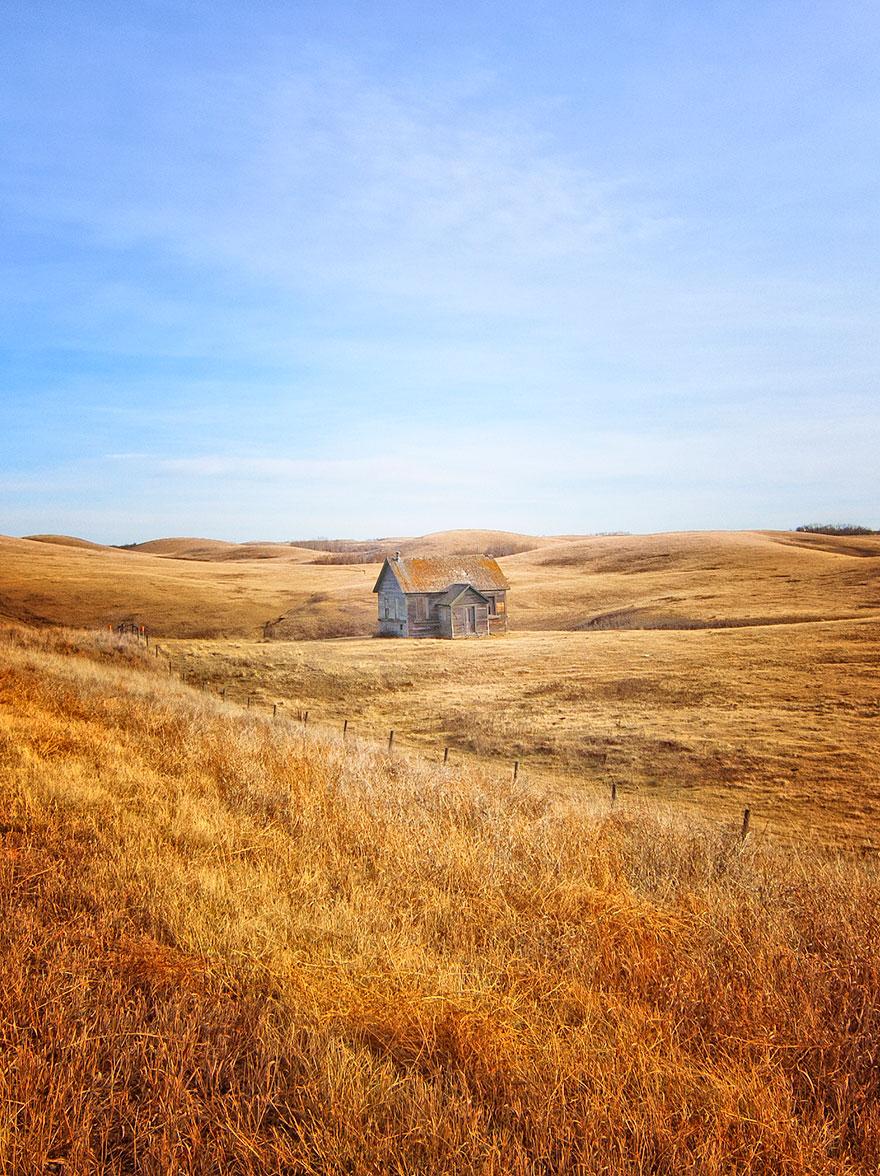 Fields of Gold, Alberta, Canada.