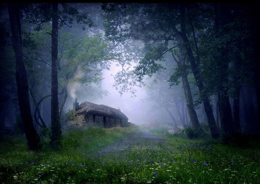 A cabin in the middle of a Scottish forest.
