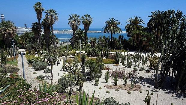 Jardins de Mossèn Costa I Llobera - Montjuic