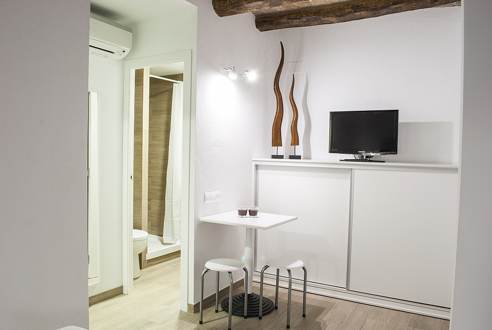 Rent studio apartment per month in Ciutat Vella