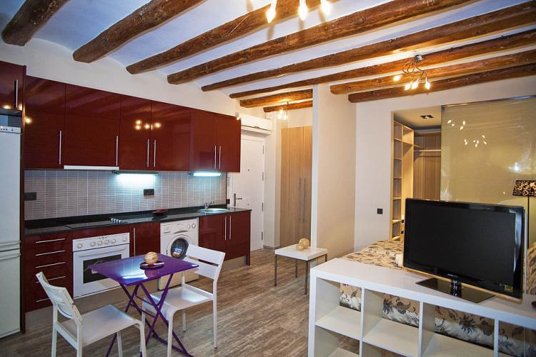 Sants studio apartment for rent, Barcelona Home