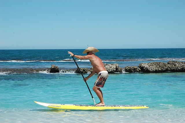 standup-paddle-boarding-2404330_640