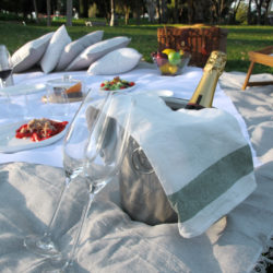 Picnic with Champagne