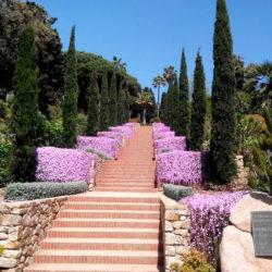 Escales-Epicur-Marimurtra03