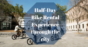 Half-Day Bike Rental Experience through the city