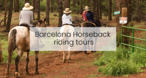Barcelona Horseback riding tours-2