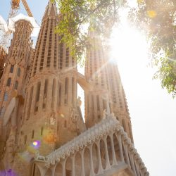 Sightseeing - Barcelona-home
