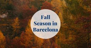 Fall Season in Barcelona Barcelona-Home