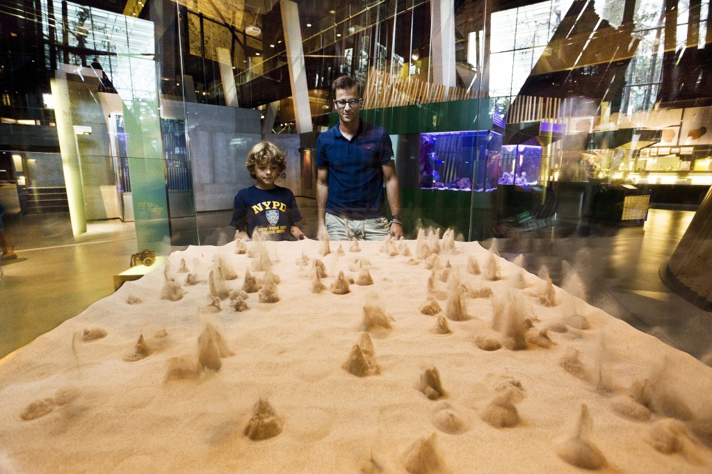 Cosmocaixa Science Museum Events And Guide Barcelona